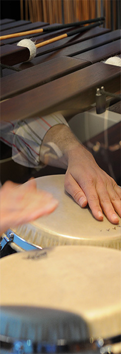 horizontal-marimba-conga